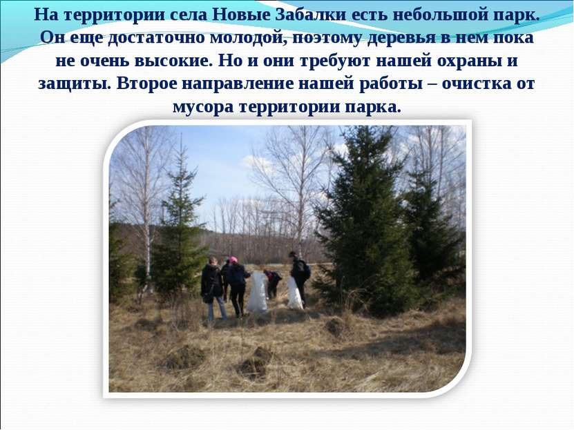На территории села Новые Забалки есть небольшой парк. Он еще достаточно молод...