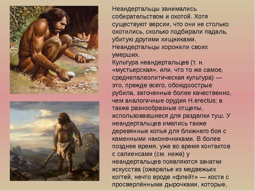 Неандертальцы занимались собирательством и охотой. Хотя существуют версии, чт...