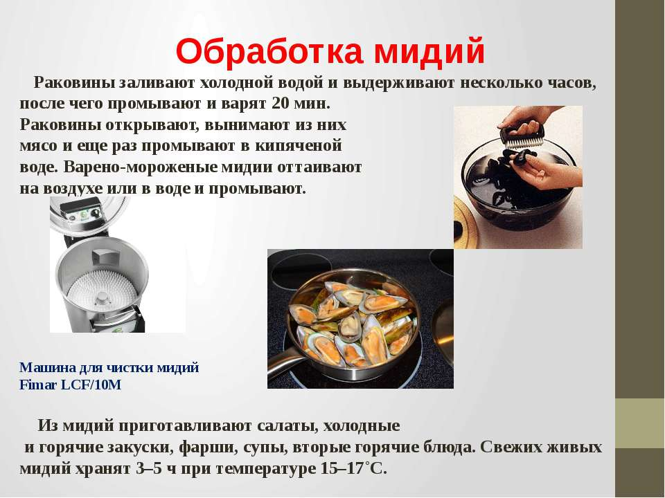 Обработка мидий Раковины заливают холодной водой и выдерживают несколько часо...
