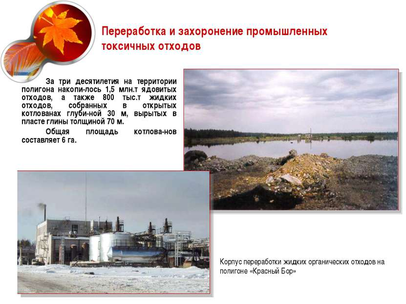 Переработка и захоронение промышленных токсичных отходов За три десятилетия н...
