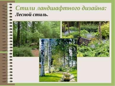 Стили ландшафтного дизайна: Лесной стиль.