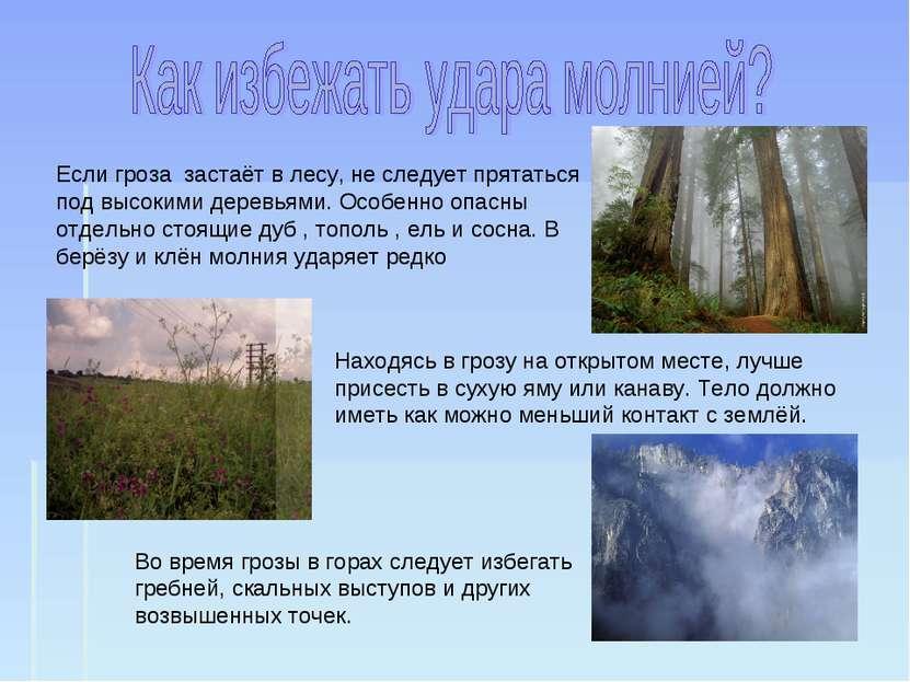 Если гроза застаёт в лесу, не следует прятаться под высокими деревьями. Особе...