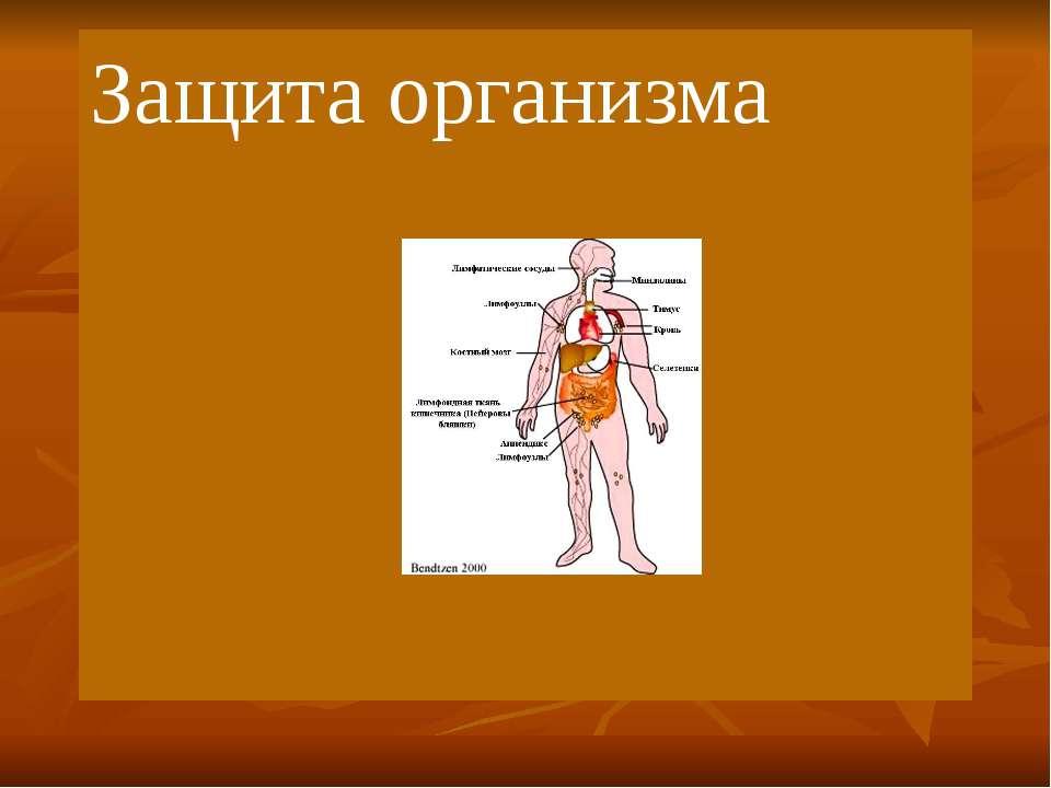 Защита организма