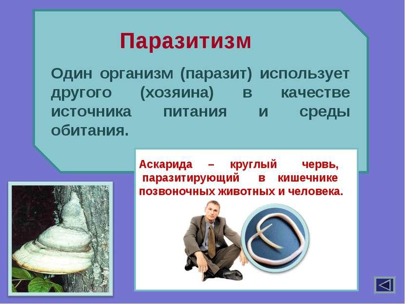 Один организм (паразит) использует другого (хозяина) в качестве источника пит...
