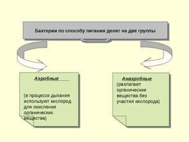Бактерии по способу питания делят на две группы Анаэробные (разлагают органич...