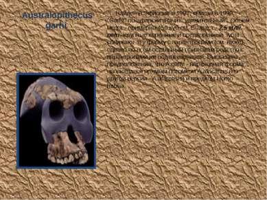 """Australopithecus garhi Найден в Эфиопии в 1997, описан в 1999. """"Garhi"""" по-афа..."""