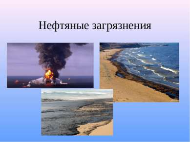 Нефтяные загрязнения