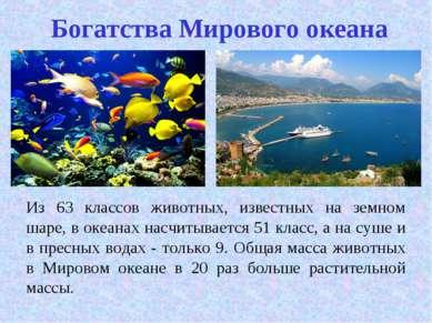Богатства Мирового океана Из 63 классов животных, известных на земном шаре, в...