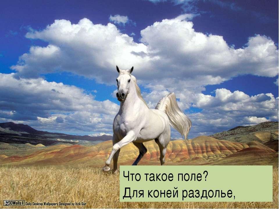 , Что такое поле? Для коней раздолье,