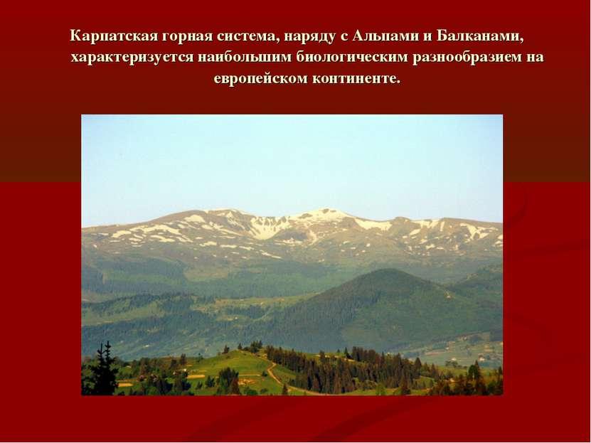 Карпатская горная система, наряду с Альпами и Балканами, характеризуется наиб...