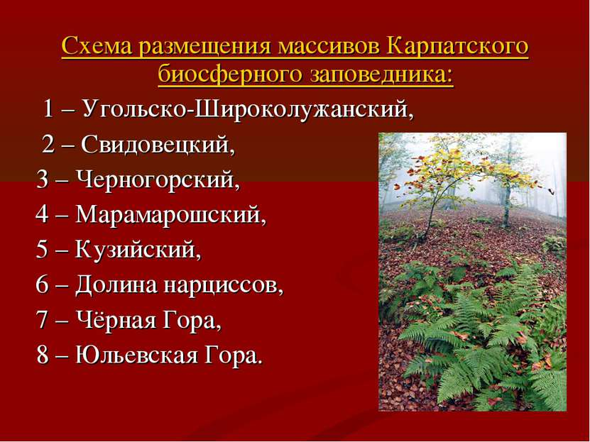 Схема размещения массивов Карпатского биосферного заповедника: 1 – Угольско-Ш...