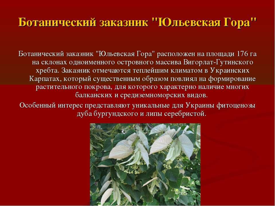 """Ботанический заказник """"Юльевская Гора"""" Ботанический заказник """"Юльевская Гора""""..."""