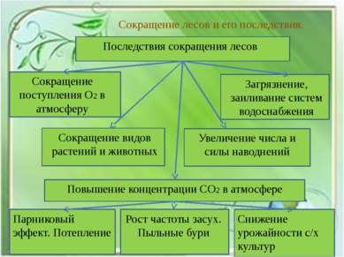 Сокращение лесов и его последствия. Последствия сокращения лесов Сокращение п...