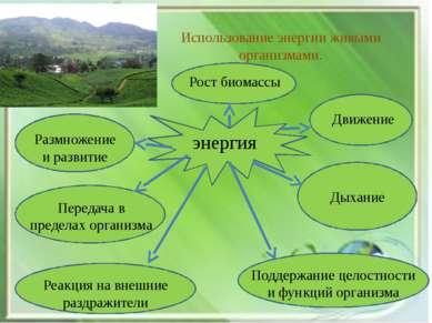 Использование энергии живыми организмами. энергия Рост биомассы Размножение и...