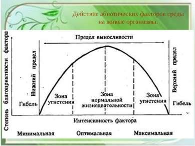 Действие абиотических факторов среды на живые организмы.