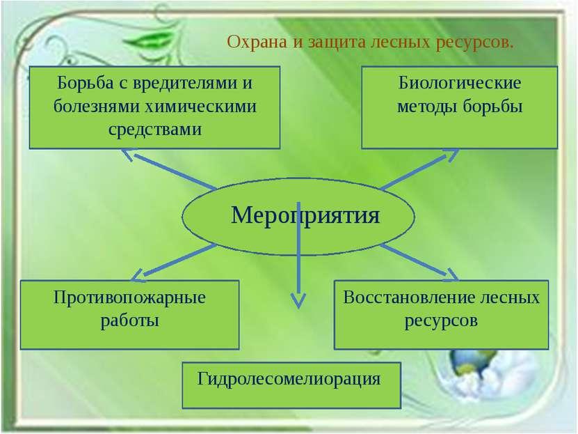 Охрана и защита лесных ресурсов. Борьба с вредителями и болезнями химическими...