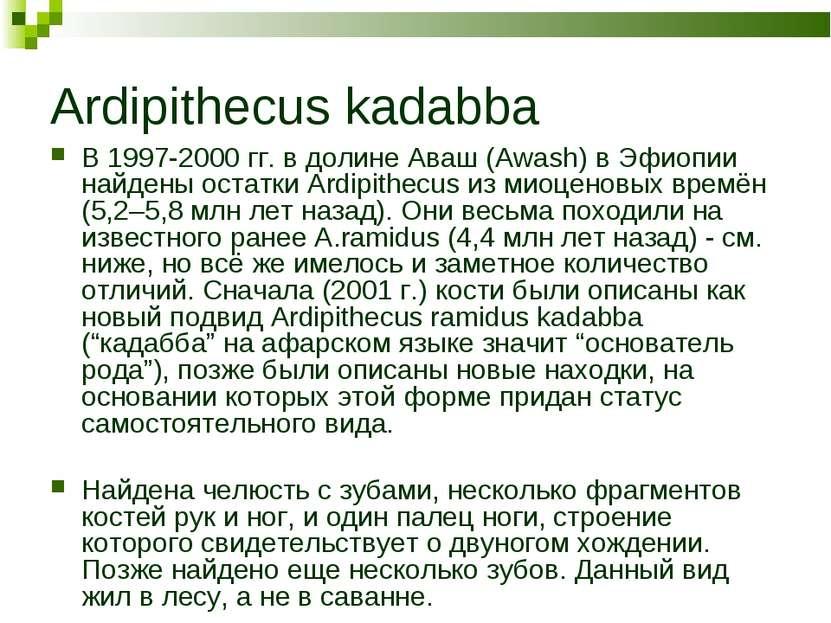Ardipithecus kadabba В 1997-2000 гг. в долине Аваш (Awash) в Эфиопии найдены ...