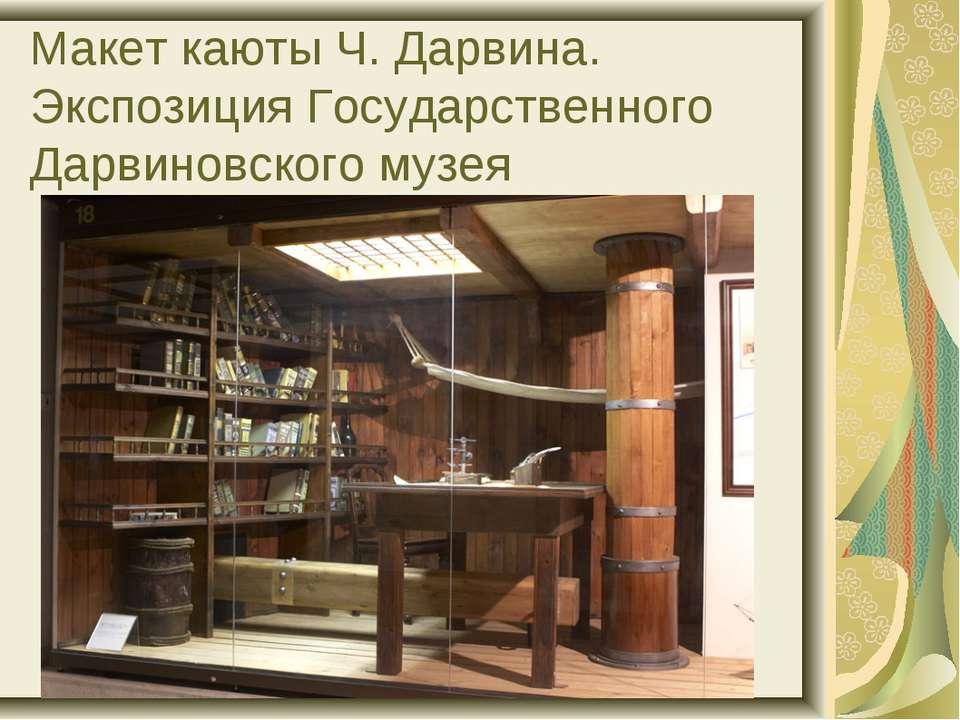 Макет каюты Ч. Дарвина. Экспозиция Государственного Дарвиновского музея