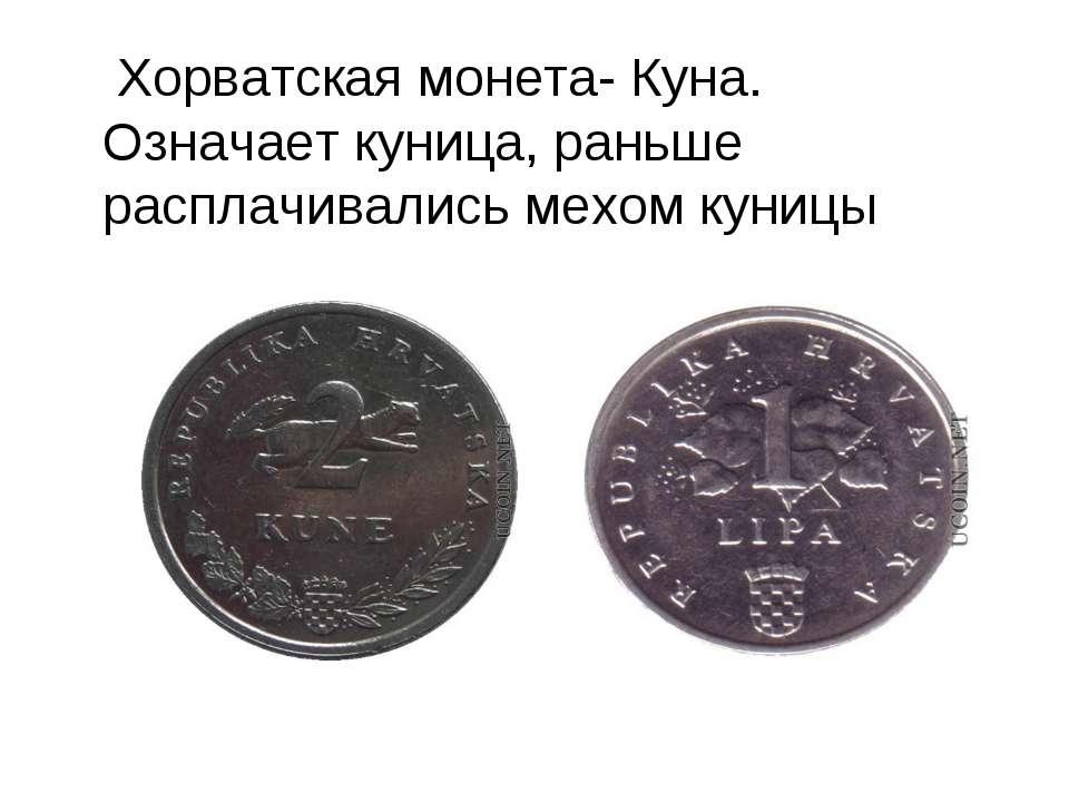 Хорватская монета- Куна. Означает куница, раньше расплачивались мехом куницы