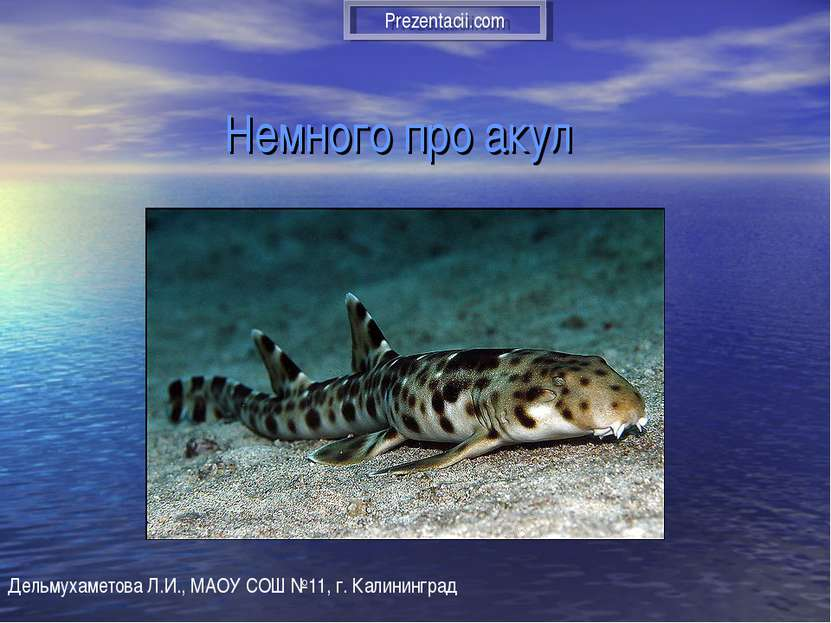 Немного про акул Дельмухаметова Л.И., МАОУ СОШ №11, г. Калининград Prezentaci...