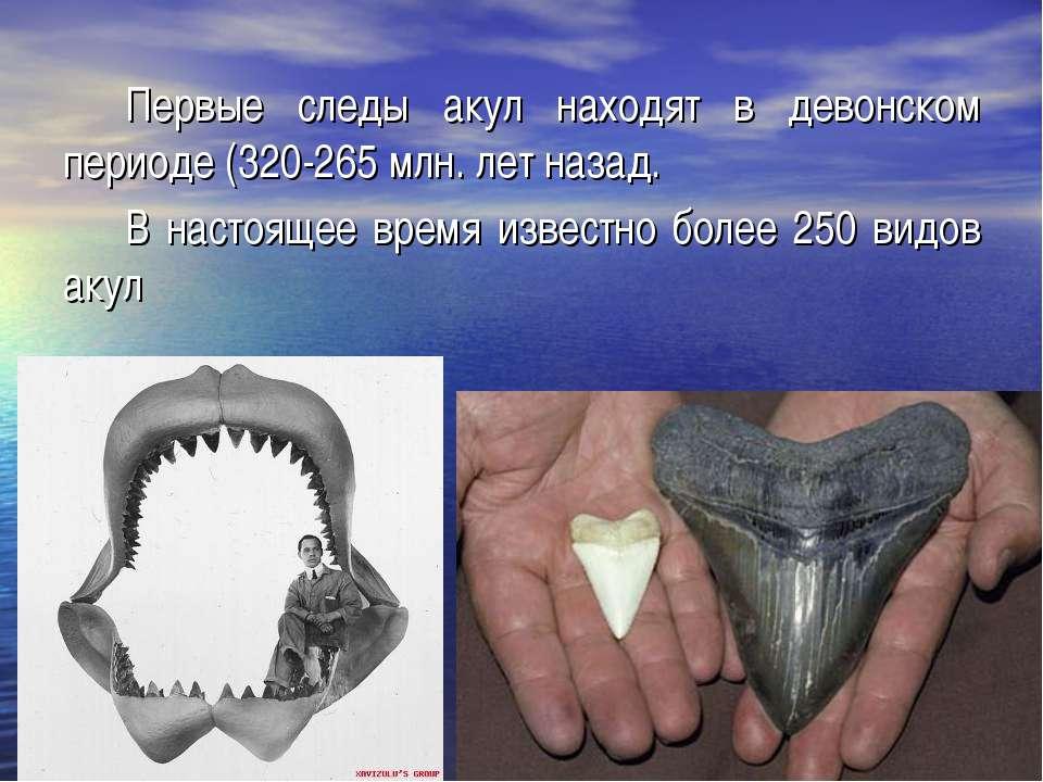 Первые следы акул находят в девонском периоде (320-265 млн. лет назад. В наст...