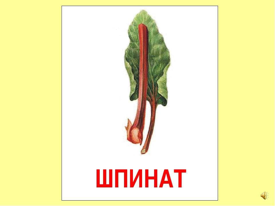 ШПИНАТ