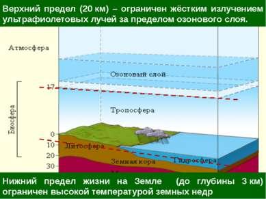 Нижний предел жизни на Земле (до глубины 3км) ограничен высокой температурой...