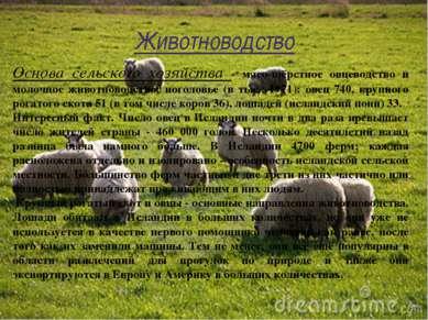 Животноводство Основа сельского хозяйства - мясо-шёрстное овцеводство и молоч...