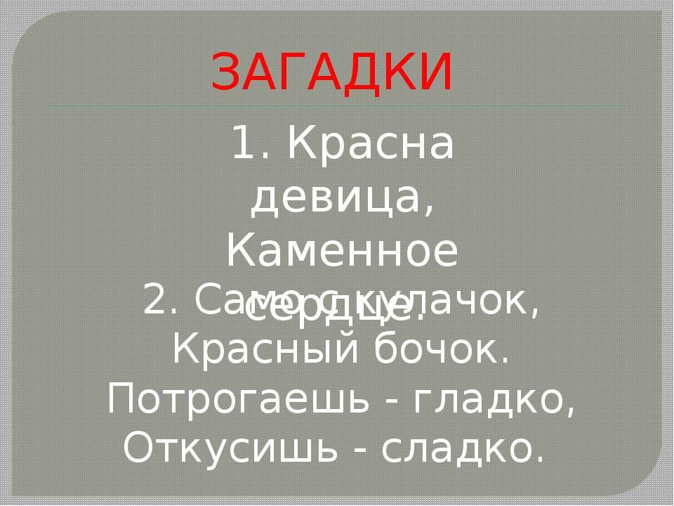 ЗАГАДКИ 1.Красна девица, Каменное сердце. 2. Само с кулачок, Красный бочок....
