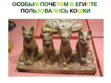 ОСОБЫМ ПОЧЕТОМ В ЕГИПТЕ ПОЛЬЗОВАЛИСЬ КОШКИ Священные кошки. Париж, Лувр. XXVI...