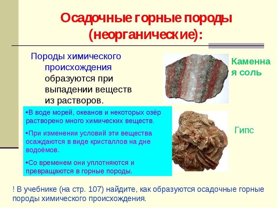 Осадочные горные породы (неорганические): Породы химического происхождения об...