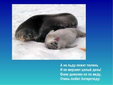 А на льду лежит тюлень И не мерзнет целый день! Всем доволен он по виду, Оч...