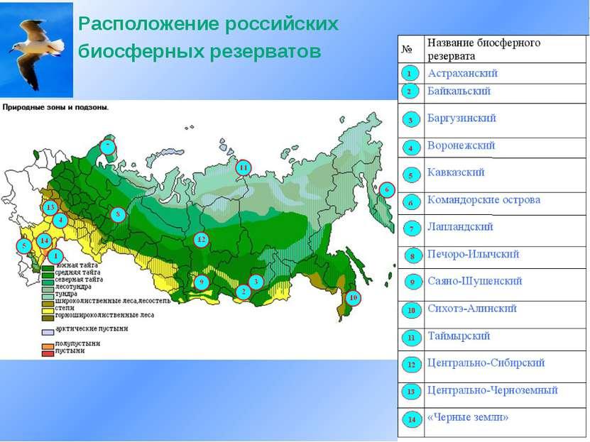 Расположение российских биосферных резерватов