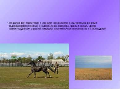 На равнинной территории с южными черноземами и каштановыми почвами выращиваю...