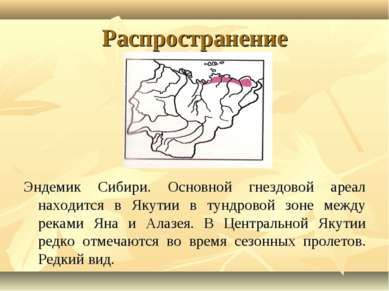 Распространение Эндемик Сибири. Основной гнездовой ареал находится в Якутии в...