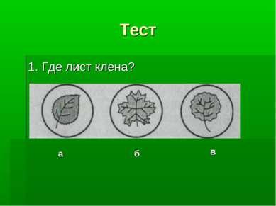 Тест 1. Где лист клена? а б в