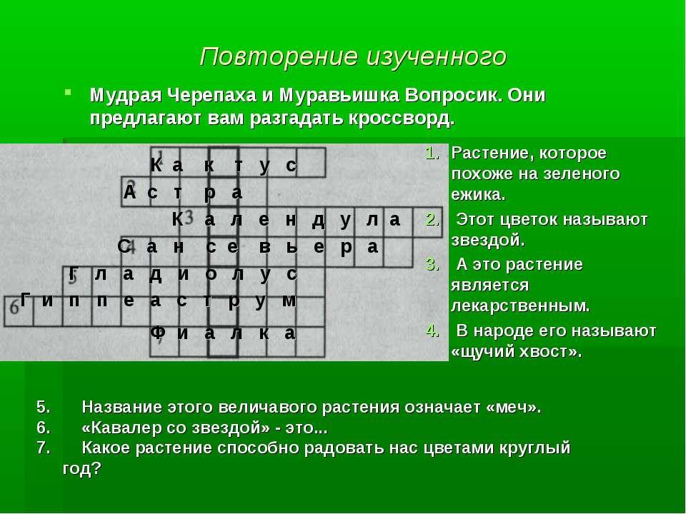 Повторение изученного Мудрая Черепаха и Муравьишка Вопросик. Они предлагают в...
