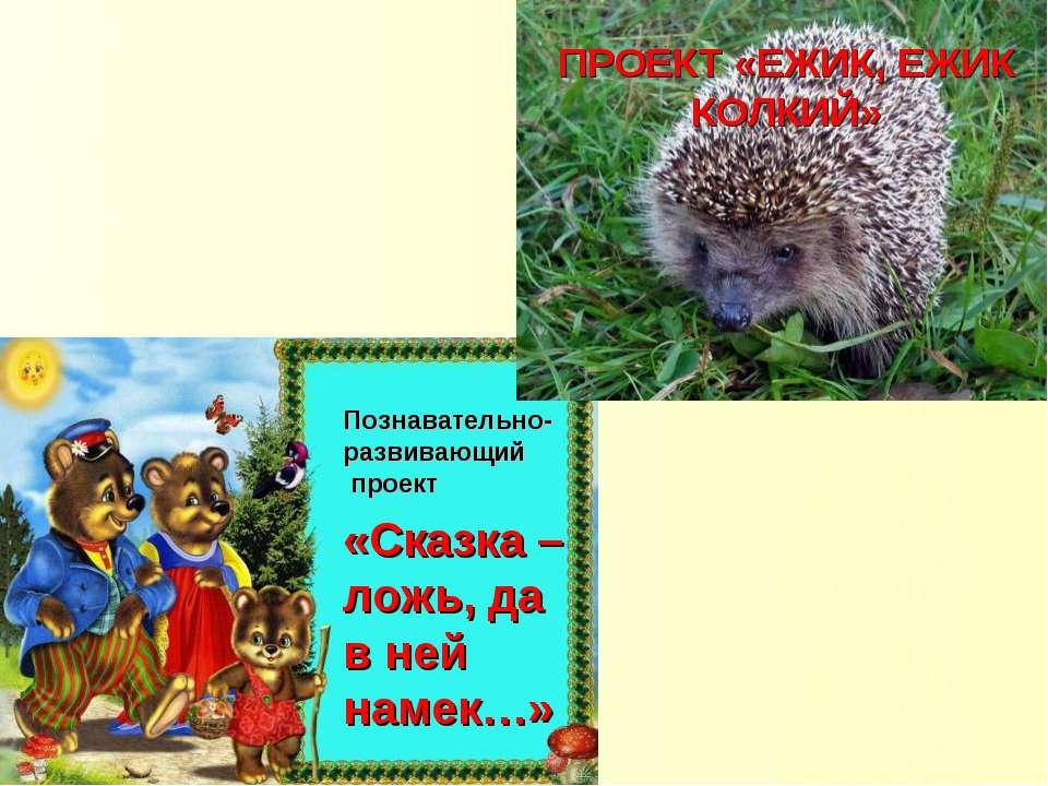 ПРОЕКТ «ЕЖИК, ЕЖИК КОЛКИЙ» Познавательно-развивающий проект «Сказка – ложь, д...