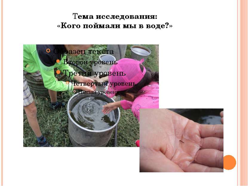 Тема исследования: «Кого поймали мы в воде?»