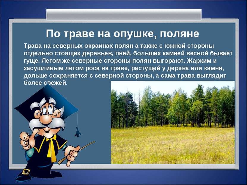 По траве на опушке, поляне Трава на северных окраинах полян а также с южной с...