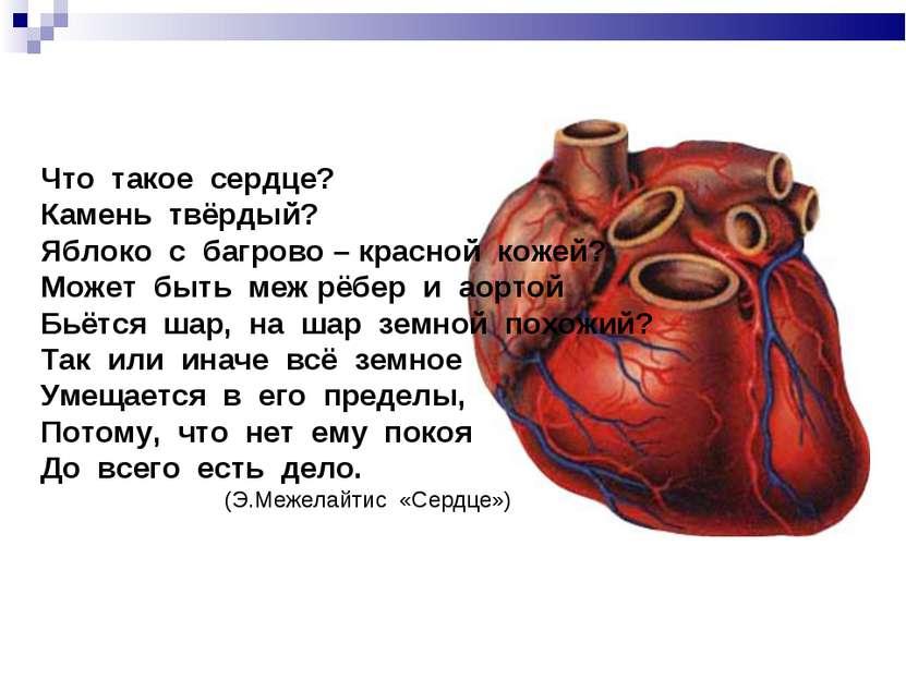 Что такое сердце? Камень твёрдый? Яблоко с багрово – красной кожей? Может быт...