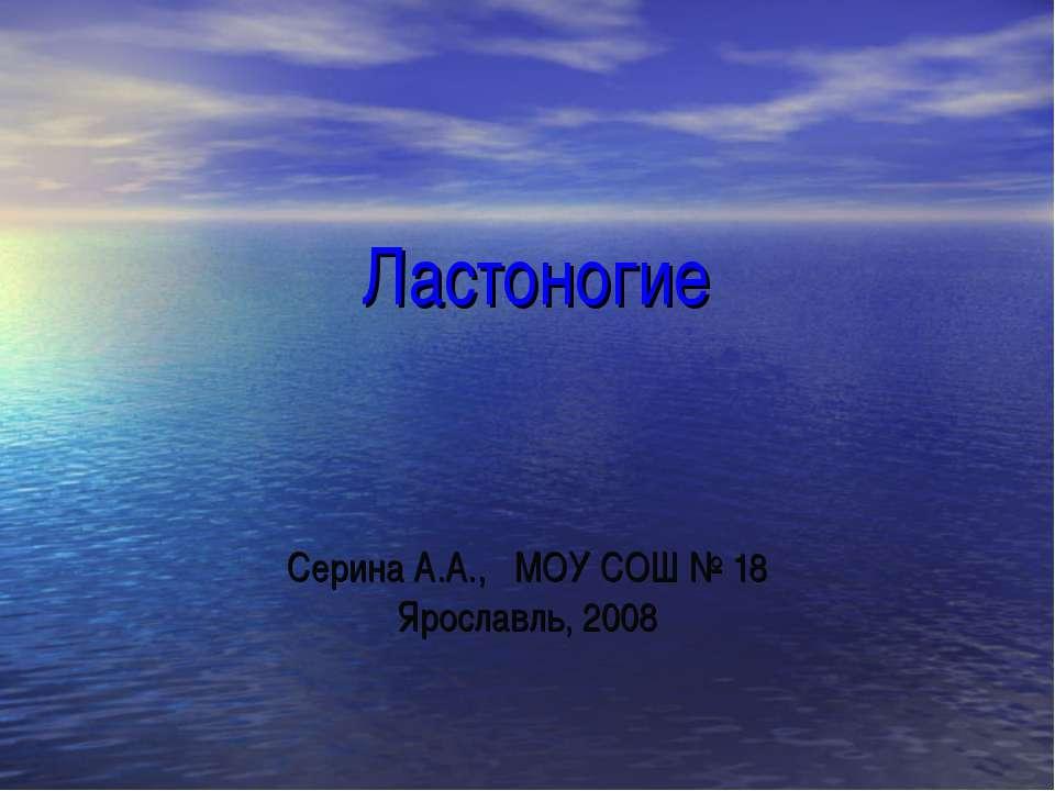 Ластоногие Серина А.А., МОУ СОШ № 18 Ярославль, 2008