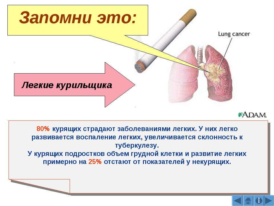 Легкие курильщика 80% курящих страдают заболеваниями легких. У них легко разв...