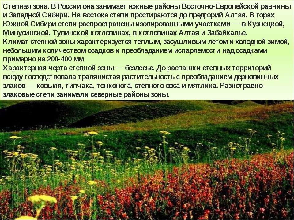 Степная зона. В России она занимает южные районы Восточно-Европейской равнины...