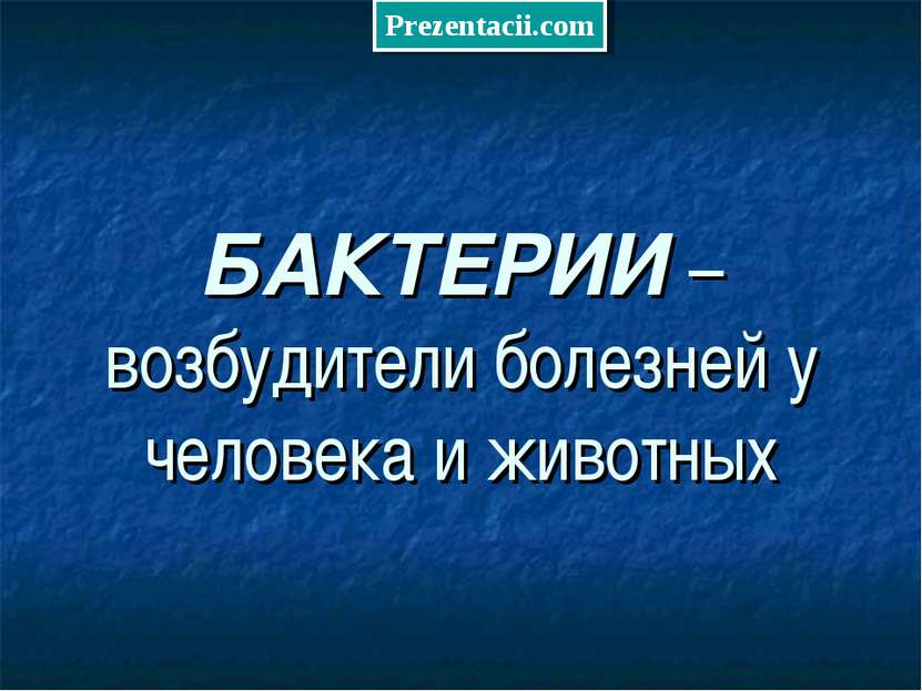 БАКТЕРИИ – возбудители болезней у человека и животных Prezentacii.com