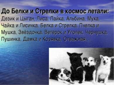 До Белки и Стрелки в космос летали: Дезик и Цыган, Лиса, Лайка, Альбина, Муха...