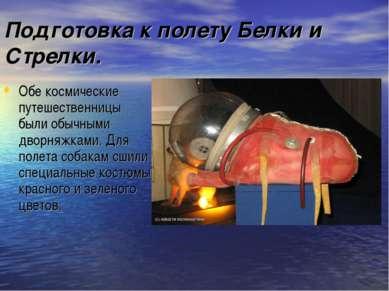 Подготовка к полету Белки и Стрелки. Обе космические путешественницы были обы...