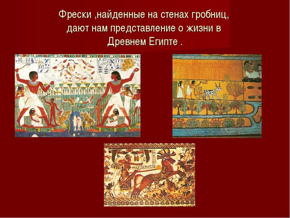 Фрески ,найденные на стенах гробниц, дают нам представление о жизни в Древнем...
