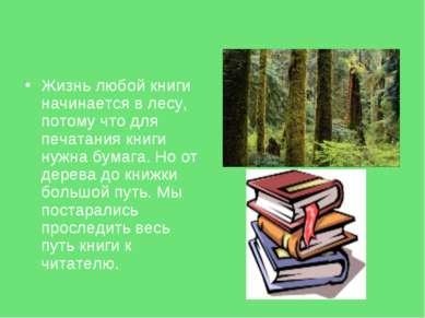 Жизнь любой книги начинается в лесу, потому что для печатания книги нужна бум...