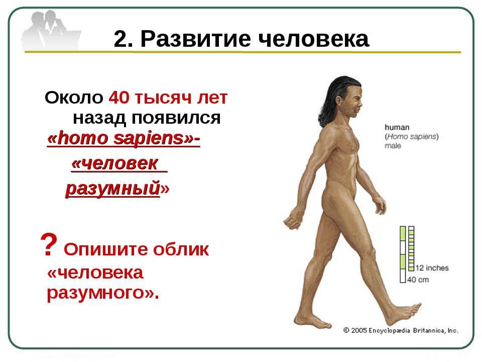 2. Развитие человека Около 40 тысяч лет назад появился «homo sapiens»- «челов...